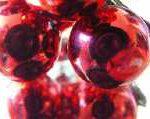 weihnachten 150x119 - Nur eine Weihnachtsgans für Hartz IV (Hartzis)