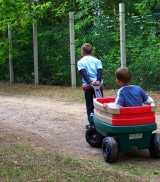 kinderregelsatz hartz iv - Kinderschutzbund: 500 Euro Hartz IV Regelsatz