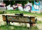 wohnungslose 150x106 - Dramatischer Anstieg der Wohnungslosigkeit