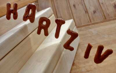 gutachten hartz4 - Hartz IV-Anspruch auch für EU-Bürger