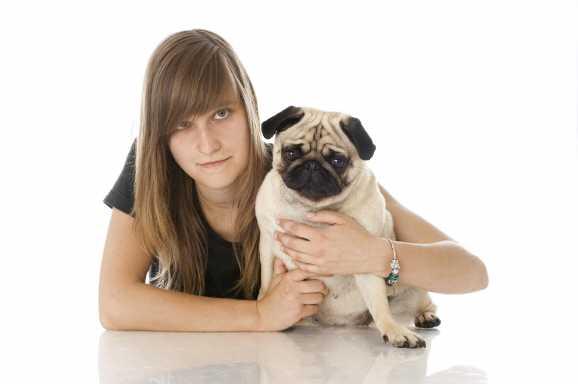 hundehaftpflicht hartz4 - Hartz IV: Hundehaftpflicht anrechenbar