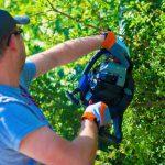 Hartz IV-Betroffene zu Gärtnerarbeiten und Pflege von Radwegen verdonnert