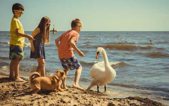 kinderfreizeit - Hartz IV: Kinder mit Anspruch auf Schülerfreizeit