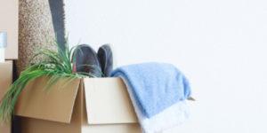 Hartz IV: Selbst Kakerlakenbefall kein Grund für neue Möbel vom Jobcenter